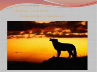 Чтоб пустыни нагрянуть не смели, Чтобы души не стали пусты, Охраняются звери