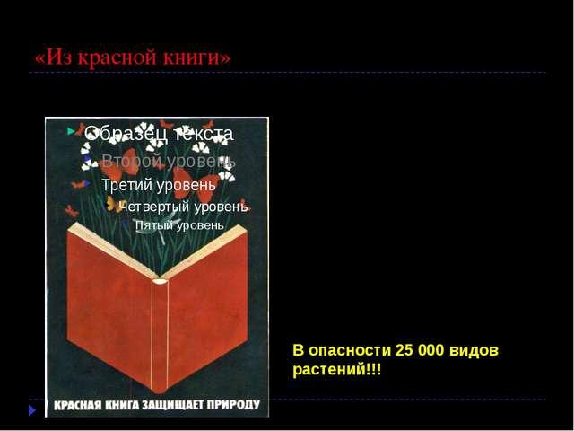«Из красной книги» Мы растения эти знаем, Бережем и охраняем. В Книгу красну...