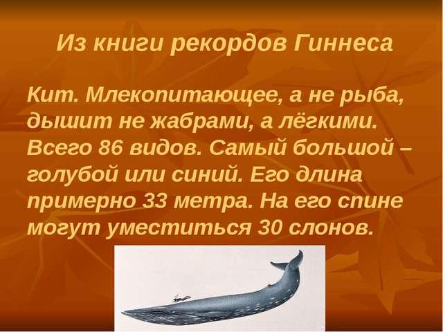Из книги рекордов Гиннеса Кит. Млекопитающее, а не рыба, дышит не жабрами, а...