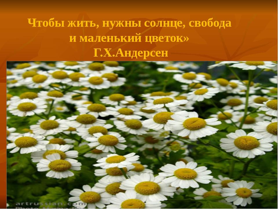 Чтобы жить, нужны солнце, свобода и маленький цветок» Г.Х.Андерсен