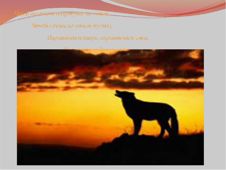 Чтоб пустыни нагрянуть не смели, Чтобы души не стали пусты, Охраняются звери...