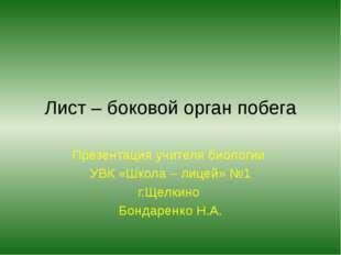 Лист – боковой орган побега Презентация учителя биологии УВК «Школа – лицей»