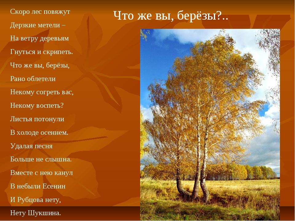 Что же вы, берёзы?.. Скоро лес повяжут Дерзкие метели – На ветру деревьям Гну...