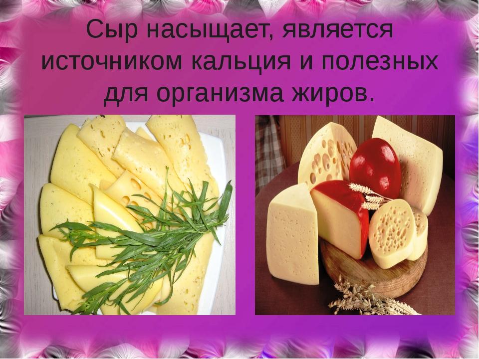 Сыр насыщает, является источником кальция и полезных для организма жиров.