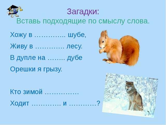 Загадки: Вставь подходящие по смыслу слова. Хожу в ………….. шубе, Живу в …………....