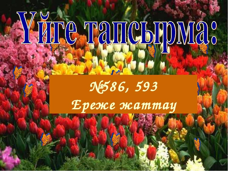 №586, 593 Ереже жаттау