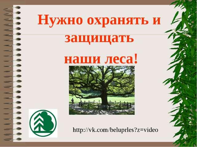 Нужно охранять и защищать наши леса! http://vk.com/beluprles?z=video