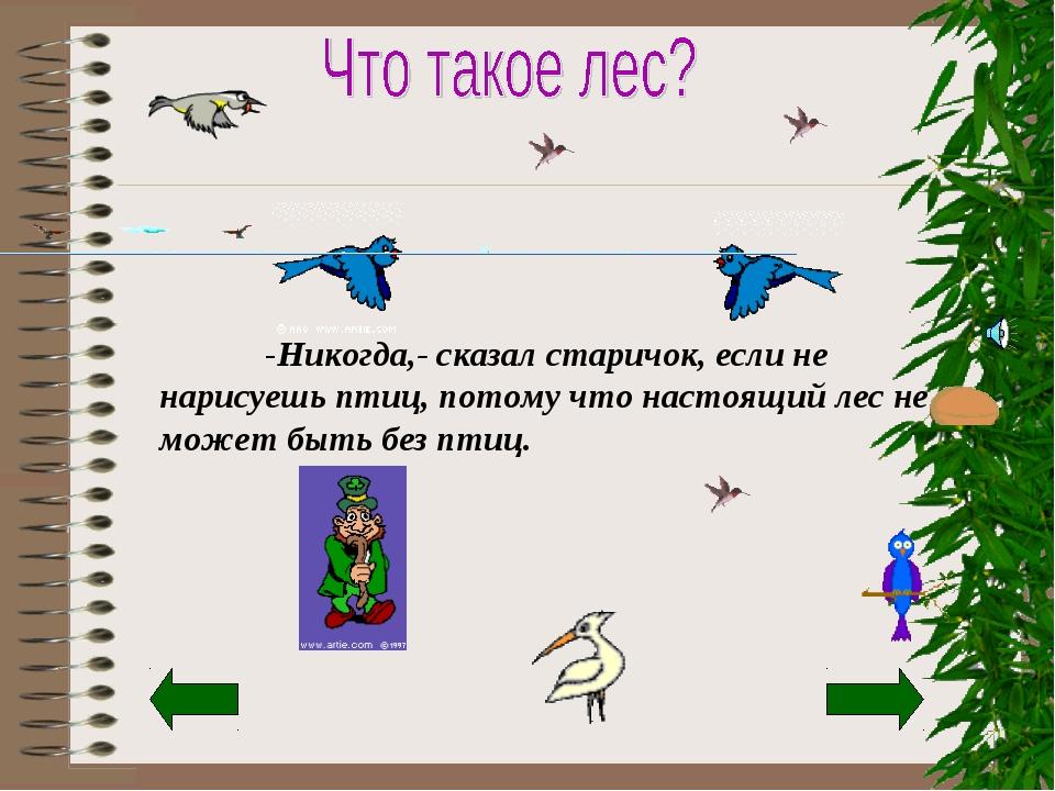 -Никогда,- сказал старичок, если не нарисуешь птиц, потому что настоящий лес...