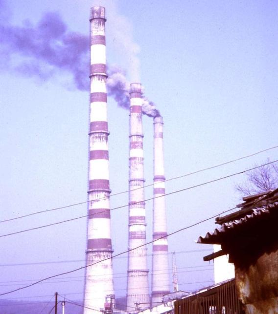 http://www.dishisvobodno.ru/pictures/eco_dalnii_vostok_4.jpg