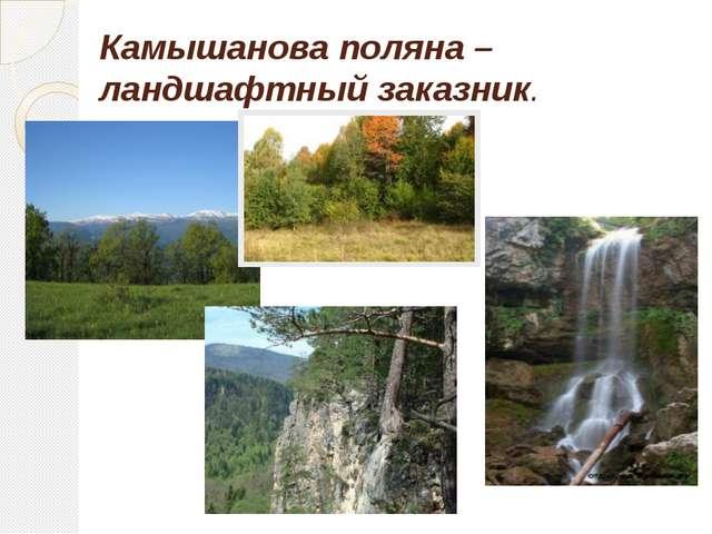 Камышанова поляна – ландшафтный заказник.