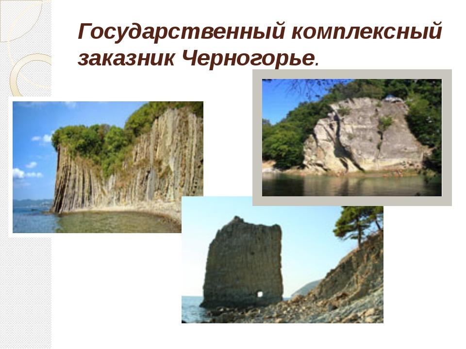 Государственный комплексный заказник Черногорье.