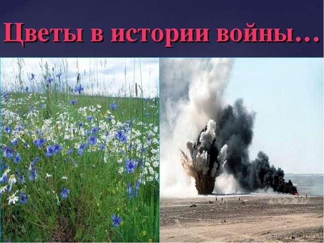 Цветы в истории войны…