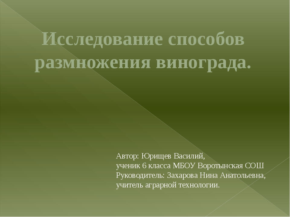 Исследование способов размножения винограда. Автор: Юрищев Василий, ученик 6...
