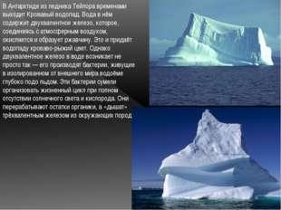 В Антарктиде из ледника Тейлора временами выходит Кровавый водопад. Вода в нё