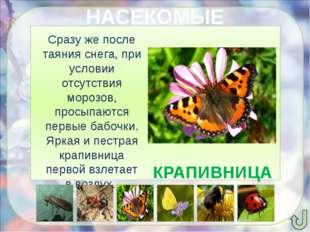 Информационные источники Фон Титульный слайд Весна Слайд 2 Цветы, явления, иг
