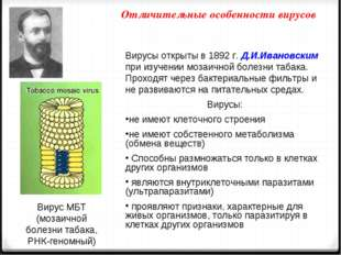 Отличительные особенности вирусов Вирусы открыты в 1892 г. Д.И.Ивановским при