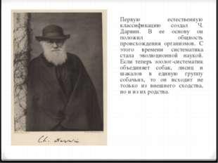 Первую естественную классификацию создал Ч. Дарвин. В ее основу он положил о