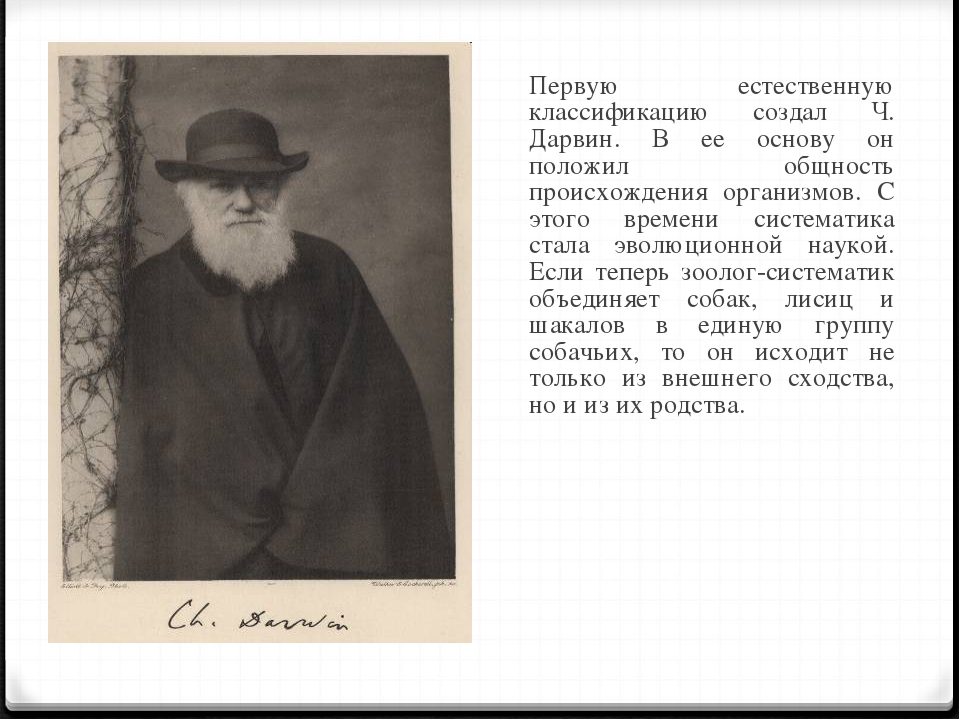 Первую естественную классификацию создал Ч. Дарвин. В ее основу он положил о...
