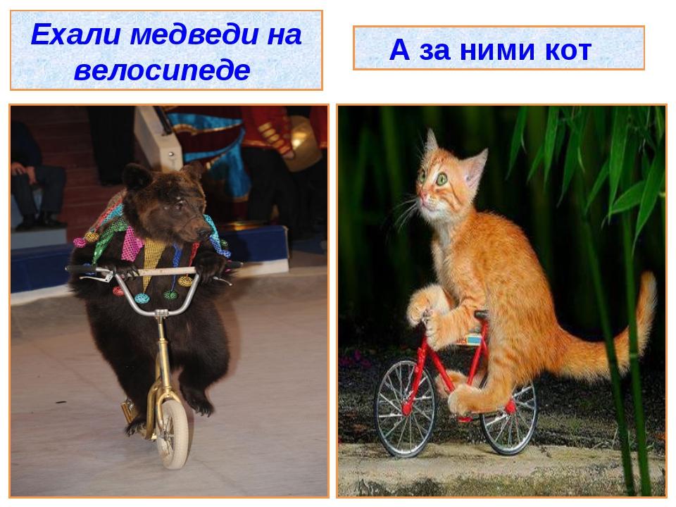Ехали медведи на велосипеде А за ними кот