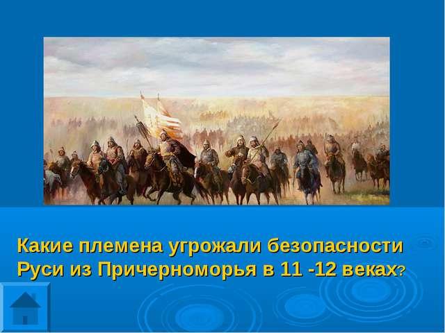Какие племена угрожали безопасности Руси из Причерноморья в 11 -12 веках?