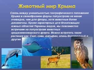 Связь между уникальностью географического положения Крыма и своеобразием фау