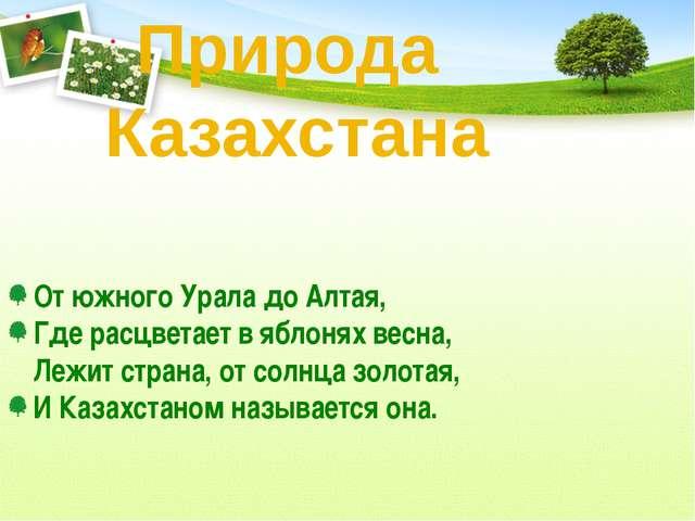 От южного Урала до Алтая, Где расцветает в яблонях весна, Лежит страна, от со...