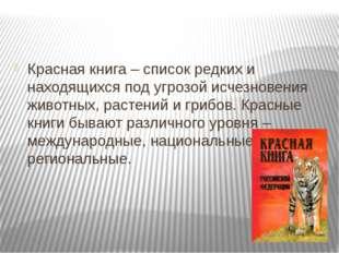 Красная книга – список редких и находящихся под угрозой исчезновения животны
