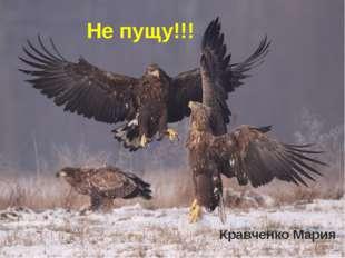 Кравченко Мария Не пущу!!!