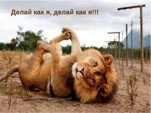 Делай как я, делай как я!!!