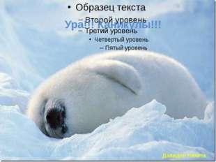 Ура!!! Каникулы!!! Давидян Никита