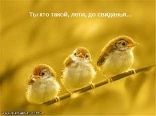 Ты кто такой, лети, до свиданья…
