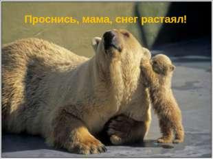 Проснись, мама, снег растаял!
