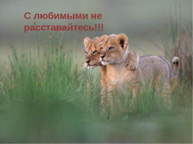 С любимыми не расставайтесь!!!