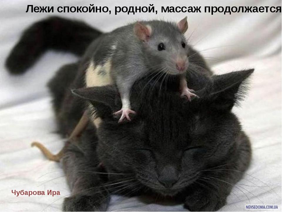Лежи спокойно, родной, массаж продолжается! Чубарова Ира