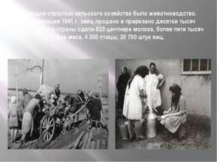 Ведущей отраслью сельского хозяйства было животноводство. За 11 месяцев 1941