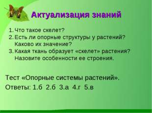 Актуализация знаний Тест «Опорные системы растений». Ответы: 1.б 2.б 3.а 4.г