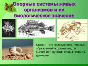 Опорные системы живых организмов и их биологическое значение Скелет – это сов