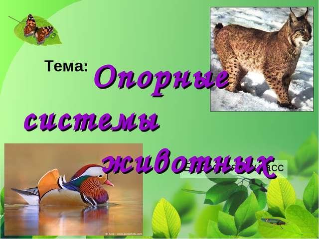 Биология 6 класс Тема: Опорные системы животных
