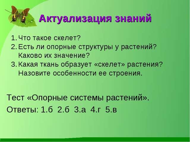 prezentatsiya-opornie-sistemi-rasteniy