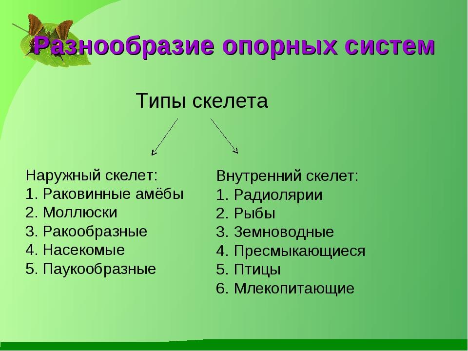 Урок опорные системы биология 6 класс