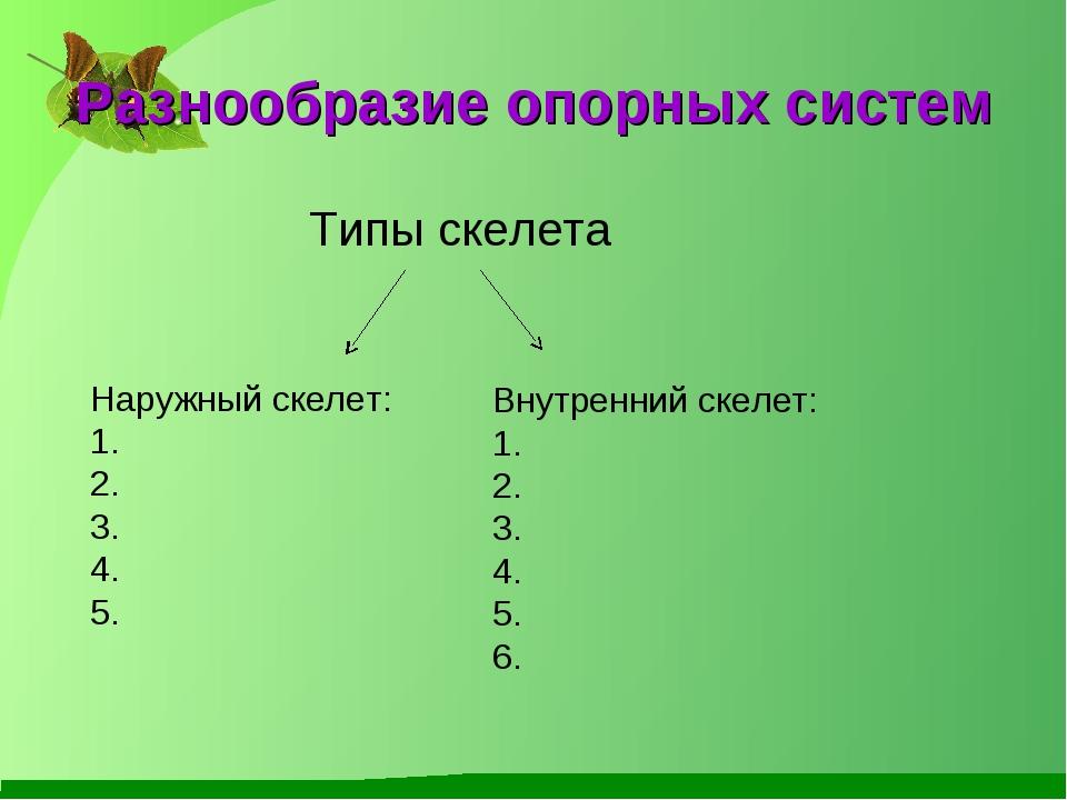 Разнообразие опорных систем Типы скелета Наружный скелет: 4. 5. Внутренний ск...