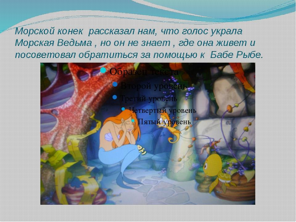 Морской конек рассказал нам, что голос украла Морская Ведьма , но он не знает...