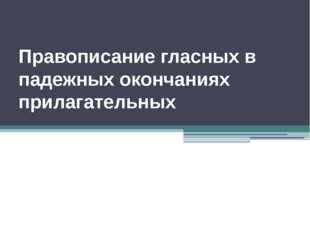 Правописание гласных в падежных окончаниях прилагательных