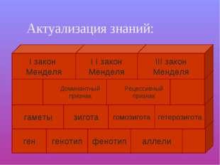 Актуализация знаний: ген генотип фенотип аллели гаметы зигота гомозигота Дом