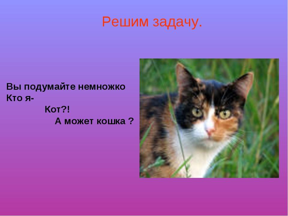 Вы подумайте немножко Кто я- Кот?! А может кошка ? Решим задачу.