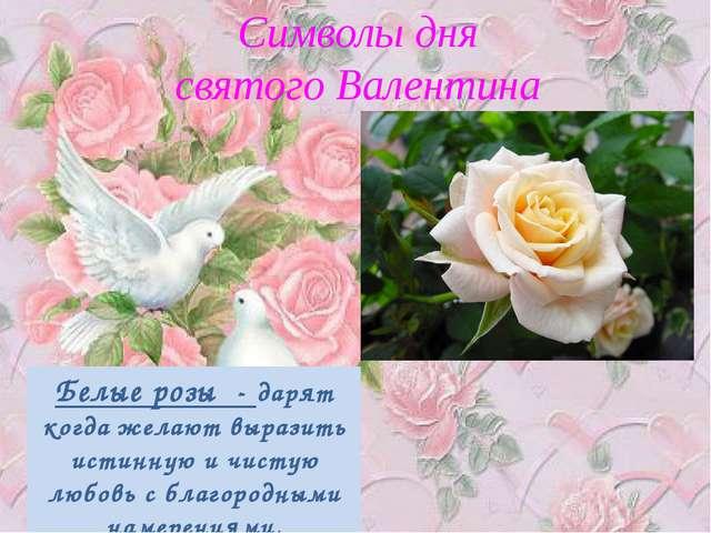 Символы дня святого Валентина Белые розы - дарят когда желают выразить истин...