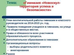 Тема: «Гимназия «Новоскул- территория успеха и безопасности» План воспитатель