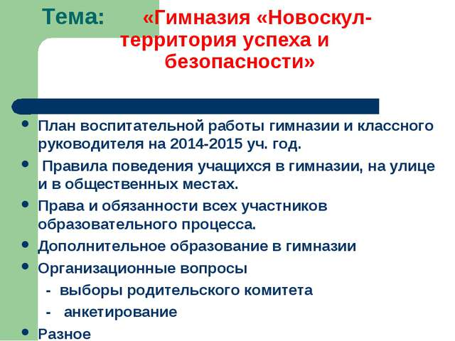 Тема: «Гимназия «Новоскул- территория успеха и безопасности» План воспитатель...