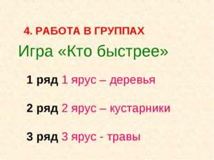 Игра «Кто быстрее» 1 ряд 1 ярус – деревья 2 ряд 2 ярус – кустарники 3 ряд 3