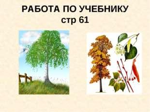 РАБОТА ПО УЧЕБНИКУ стр 61